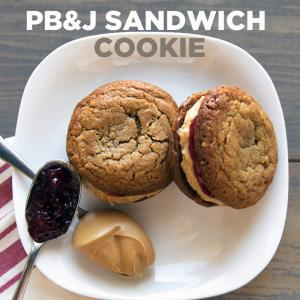PB & J Sandwich Cookie Square